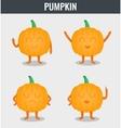 Pumpkin Funny cartoon vegetables Organic food vector image