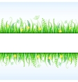 Beautiful Grass Frame vector image