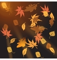 Multi-colored autumn leaves crumbling at sunset vector image