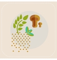 Spices icon vector image