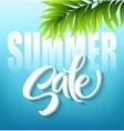 Summer sale lettering on blue background vector image