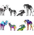 with the image of zebra giraffe vector image