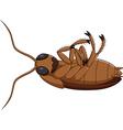 Cartoon dead cockroach vector image vector image