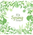 Its spring time green card design text in floral vector image