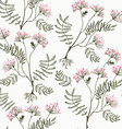 Valeriana seamless pattern - medicine for heart vector image