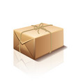 parcel box isolated vector image