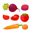 ripe vegetables and slices cartoon flat style vector image