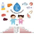 vitamin b12 or cobalamin infographic vitamin b12 vector image