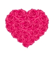 Rose heart over white vector image vector image
