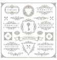 Set of vintage ornaments design elements vector image