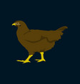 in flat style hen vector image