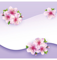 Floral background greeting card with flower sakura vector image