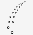 trail of cats vector image vector image