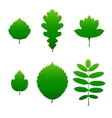 Green leaf silhouettes vector image