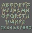 royal alphabet with graceful decor vector image