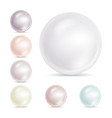 realistic pearls isolated set 3d shiny vector image