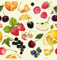 Fruit and berry pattern vector image