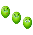 Cartoon Lime Fruit Set 1 vector image vector image