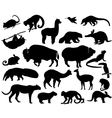 Animals of North and South America vector image