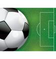 Soccer Ball on Grass Textured Field vector image