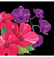 Beautiful floral pattern with hibiscus and orchid vector image