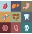 Internal human organs flat icons set vector image vector image