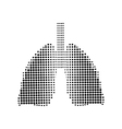 Lungs black icon white background vector image