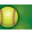 Softball on Grass Textured Field vector image