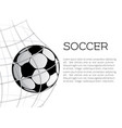 soccer ball in net or goal design vector image