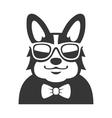 Welsh Corgi Pembroke wit Bowtie and Sunglasses vector image