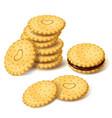 biscuit cookies or cracker with cream vector image