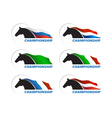 Horse with flag on white background vector image