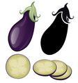 stylized eggplant vector image