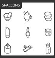 spa outline isometric icons vector image