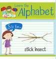 Flashcard letter S is for stick insect vector image