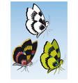 three butterflies vector image vector image