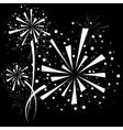 Firework white vector image