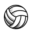 Volleyball icon Sport concept graphic vector image