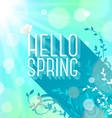 Spring greeting butterfly on letters with long vector image vector image