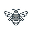 bumblebee bee icon vector image