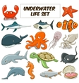 Cartoon underwater animals set vector image