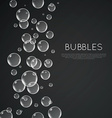 Underwater Bubbles vector image