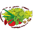 plate of salade vector image