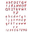 Set of big and small letters and figures vector image