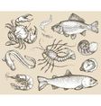 Hand drawn sketch set seafood vector image