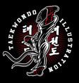 taekwondo on dark background vector image