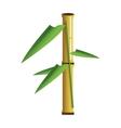 bamboo segment icon vector image