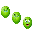 Cartoon Lime Fruit Set 4 vector image vector image