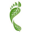 Footprint leaf vector image