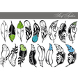 Feather collection vector image vector image